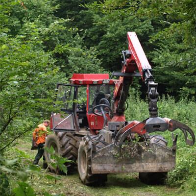 motorist-motoagregate-masini-silvicultura